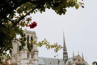 UN WEEK-END À PARIS : LE QUARTIER LATIN ET SES ALENTOURS