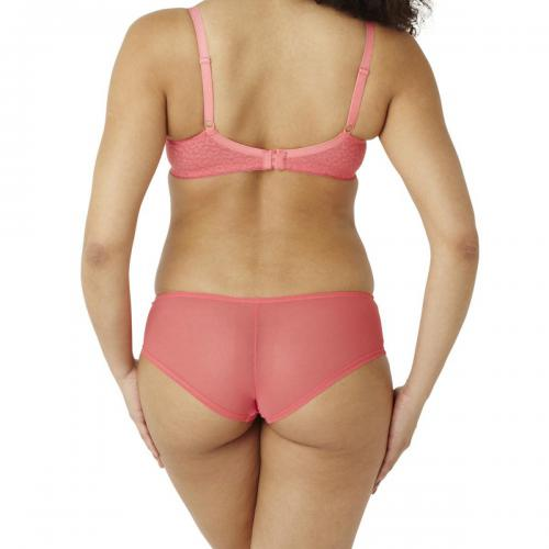 Cleo by Panache Culotte