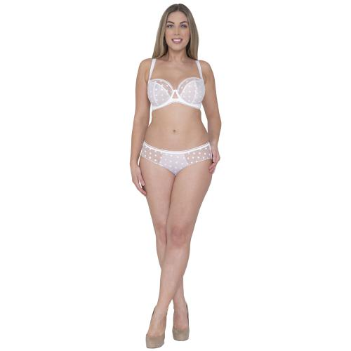 Curvy Kate Shorty